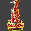 Raleigh Bikes logo image